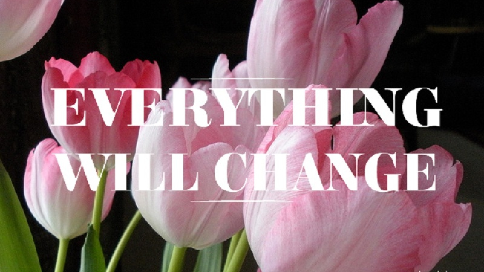 Everything Will Change