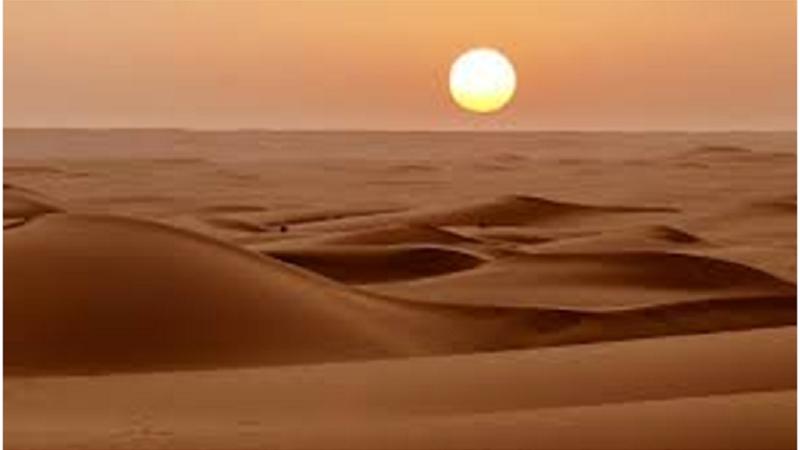 Desert Survival