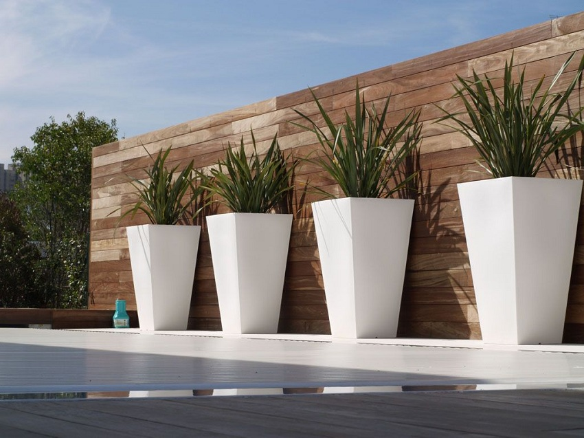 Outdoor Terracotta Planters