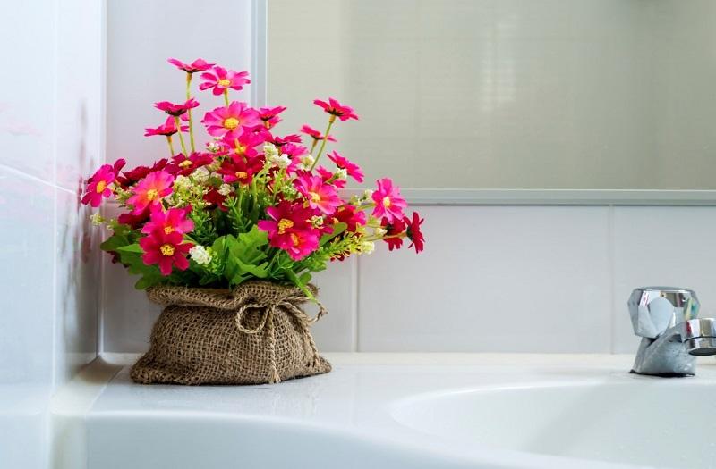 plants for bathroom