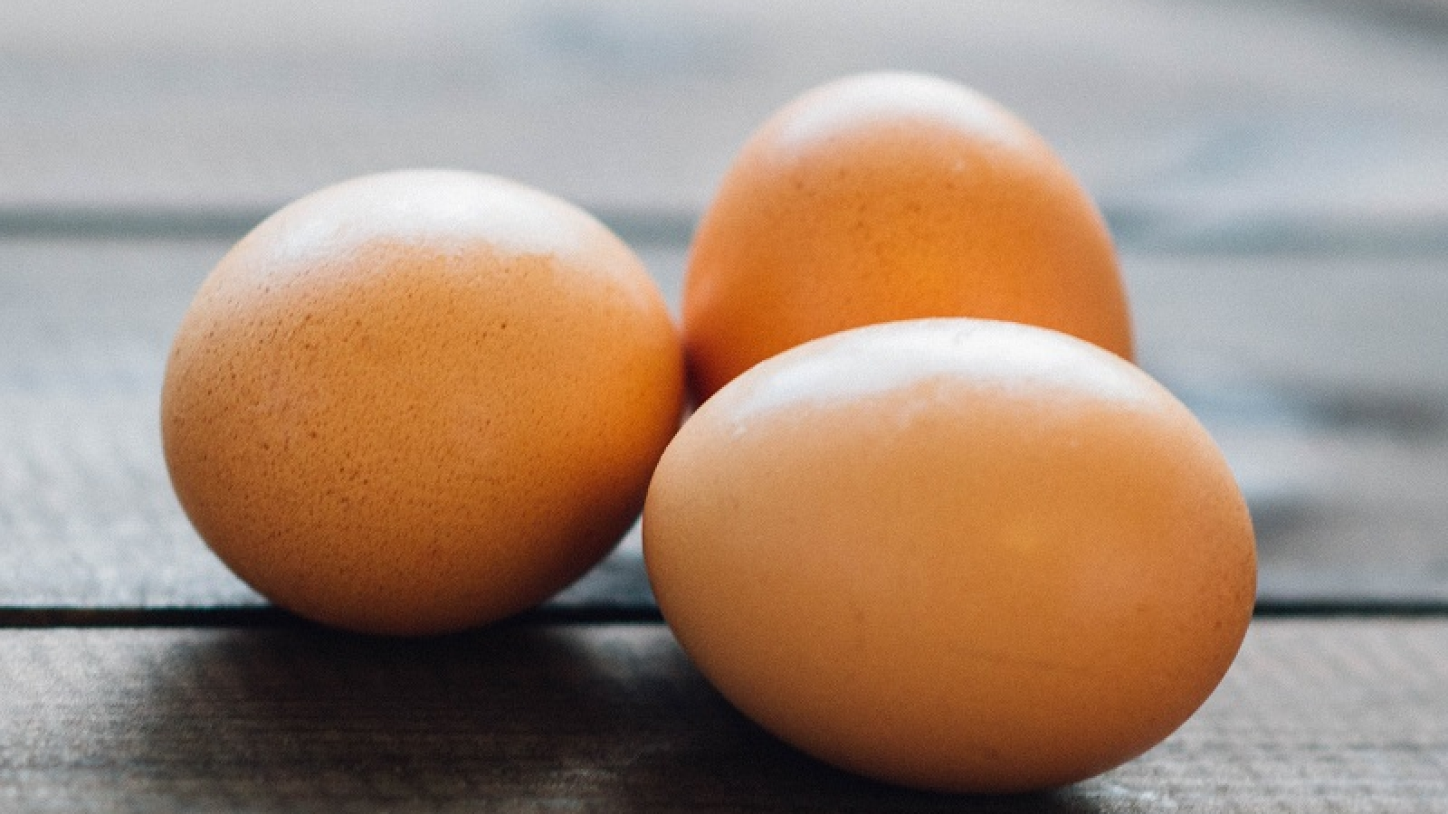 Myths about the egg