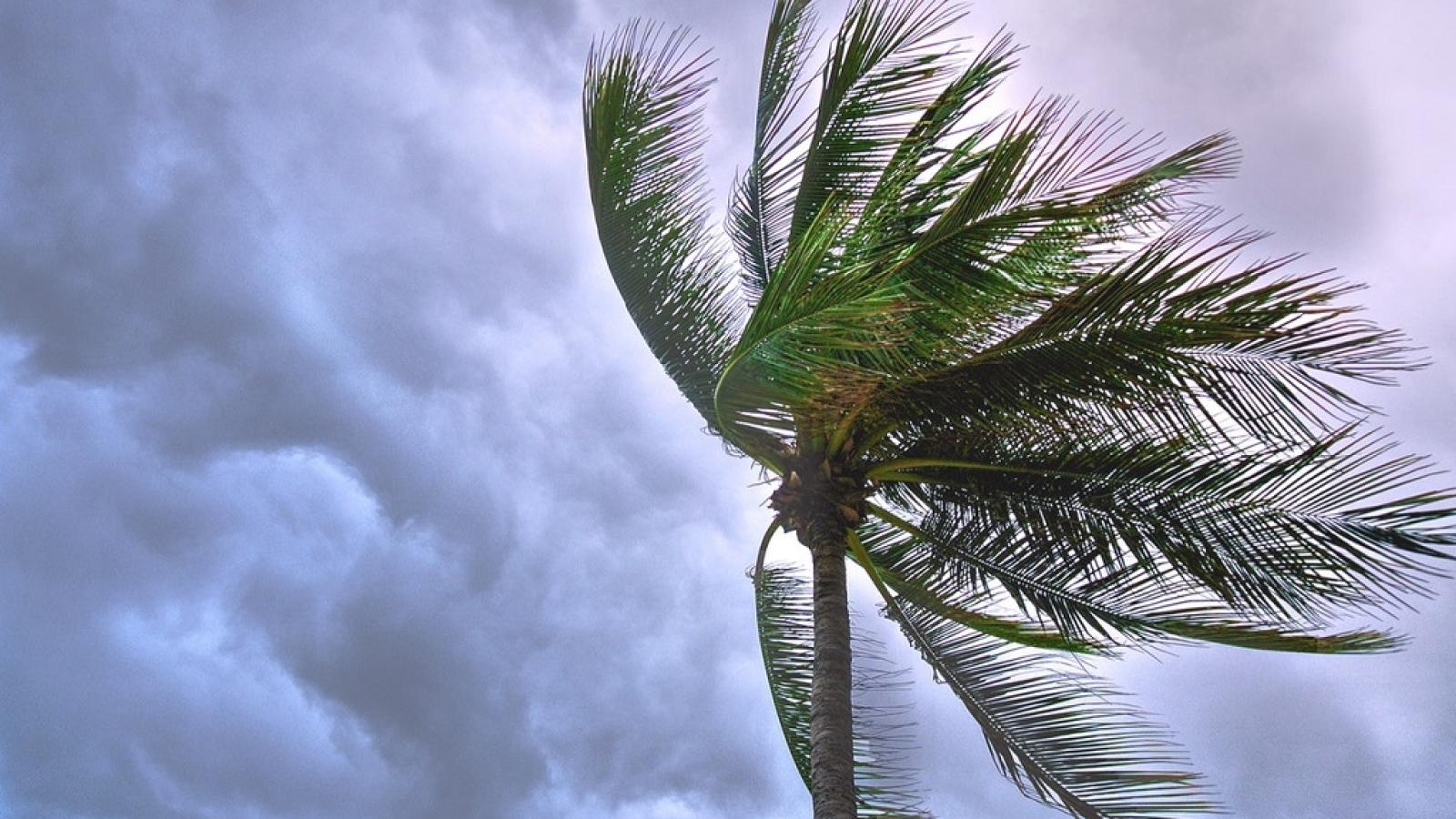Preparing Your Florida Waterfront Property for Hurricane Season