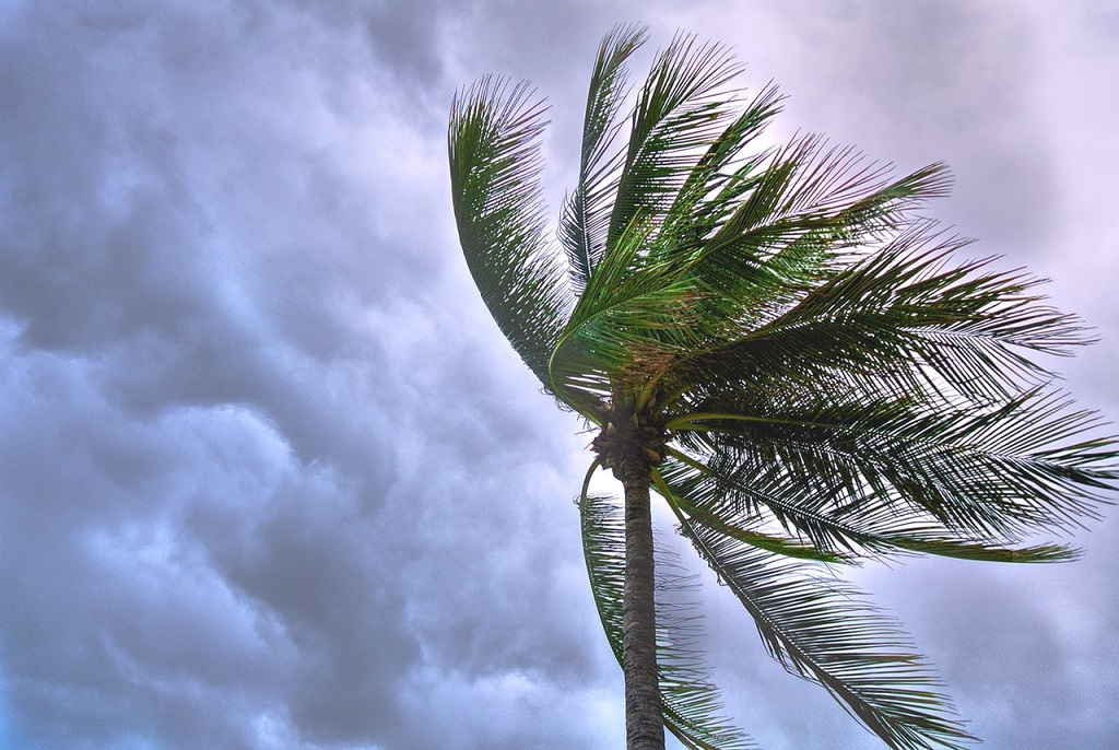 Preparing Your Florida Waterfront Property for Hurricane Season