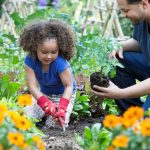 Securing Financing for Your New Garden